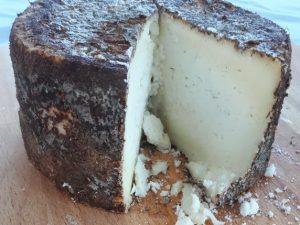 Kozji sir sa plesnima u hrastovoj kori 450gr